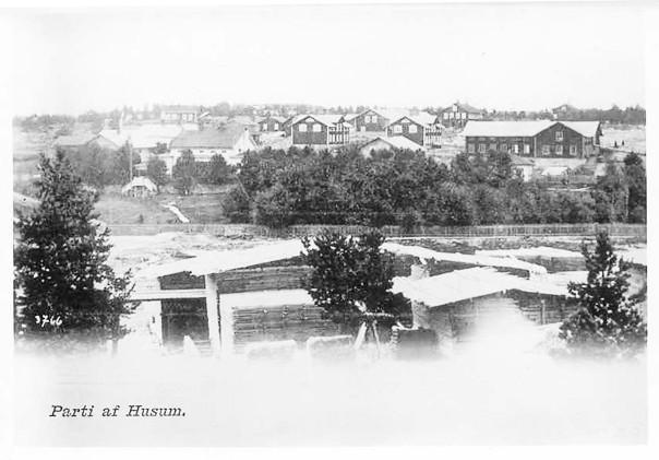 Husön som brann 1887