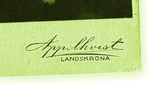 appelkvist_logo